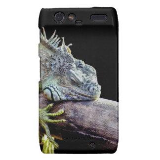 Iguana Motorola Droid RAZR Fundas