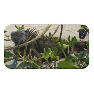 Iguana iPhone 4 Funda