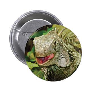 Iguana green 2 inch round button