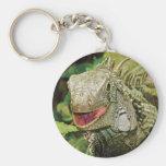Iguana green keychains