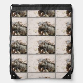 Iguana gris mochilas