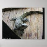 Iguana hambrienta (limpieza) posters