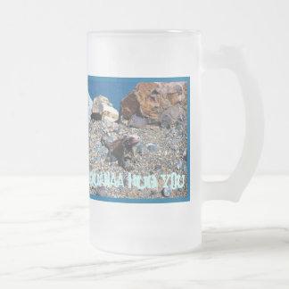 Iguana Hug You Stein Mugs