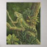 Iguana Impresiones