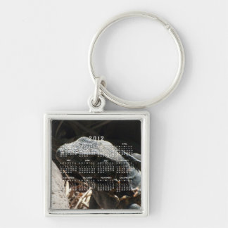 Iguana in the Shadows; 2012 Calendar Silver-Colored Square Keychain