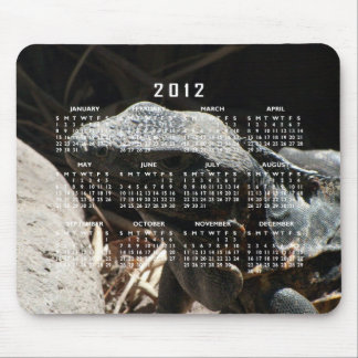 Iguana in the Shadows; 2012 Calendar Mouse Pad