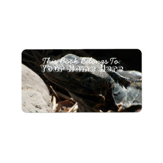 Iguana in the Shadows Label