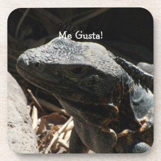 Iguana in the Shadows; Mexico Souvenir Coaster
