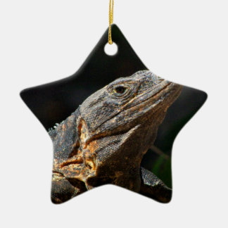 Iguana in the Sun Ceramic Ornament