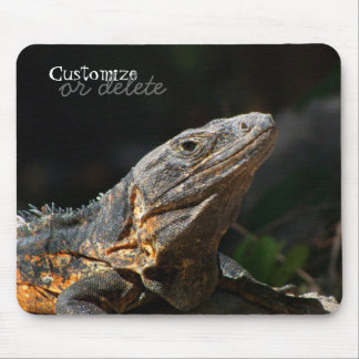 Iguana in the Sun; Customizable Mouse Pad