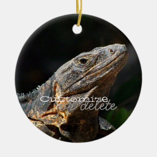 Iguana in the Sun; Customizable Double-Sided Ceramic Round Christmas Ornament