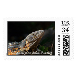 Iguana in the Sun; Customizable Postage