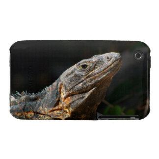 Iguana in the Sun iPhone 3 Case