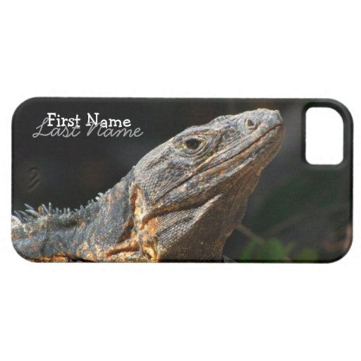 Iguana in the Sun iPhone 5 Covers