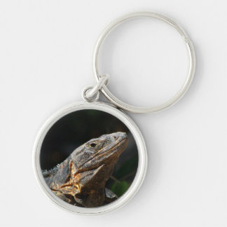 Iguana in the Sun Silver-Colored Round Keychain