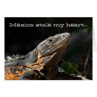 Iguana in the Sun; Mexico Souvenir Card