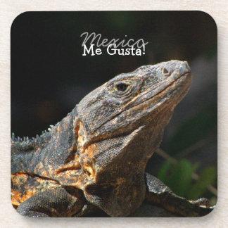 Iguana in the Sun; Mexico Souvenir Coaster