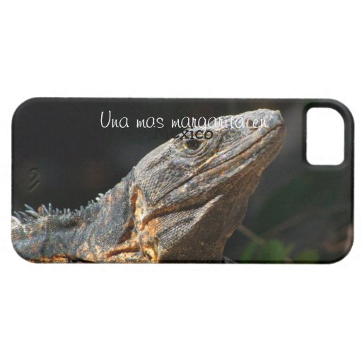 Iguana in the Sun; Mexico Souvenir iPhone 5 Covers