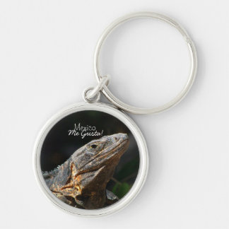 Iguana in the Sun; Mexico Souvenir Silver-Colored Round Keychain