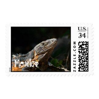Iguana in the Sun; Mexico Souvenir Stamp