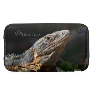 Iguana in the Sun; Mexico Souvenir Tough iPhone 3 Cover