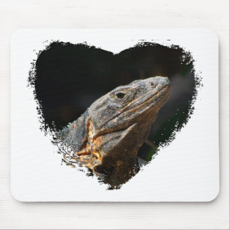 Iguana in the Sun Mouse Pad