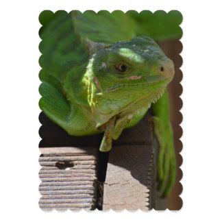 Iguana in the Tropics 5x7 Paper Invitation Card