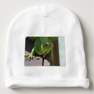 Iguana in the Tropics Baby Beanie