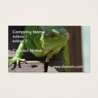 Iguana in the Tropics Business Card