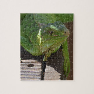 Iguana in the Tropics Jigsaw Puzzle