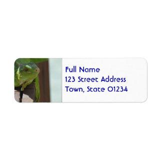 Iguana in the Tropics Label
