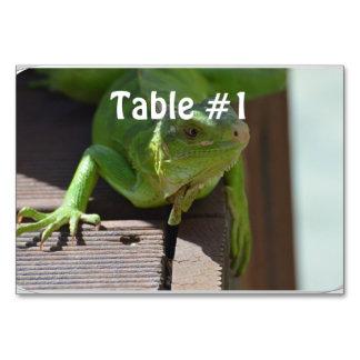 Iguana in the Tropics Table Card