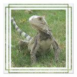 "Iguana Invitation 5.25"" Square Invitation Card"