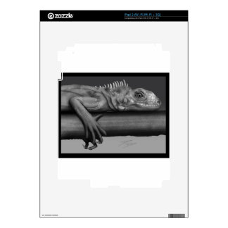 Iguana iPad 2 Decals