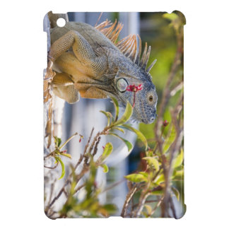 Iguana - iPad Mini case