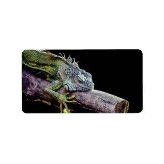 Iguana Custom Address Label