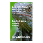 Iguana linda tarjeta personal