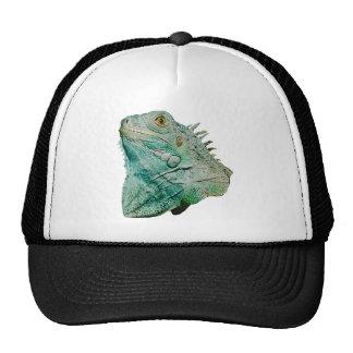 Iguana Lizard Hats