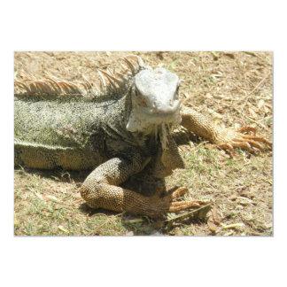 Iguana Lizard Invitation