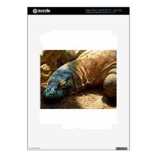 Iguana Lizard iPad 3 Skin