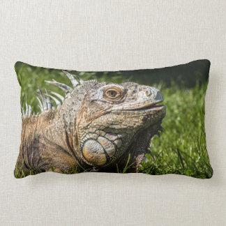 Iguana Lizard Pillow