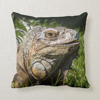 Iguana Lizard Pillows