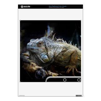 Iguana Lizard Reptile Wild Animal Playstation 3 Skins For PS3 Slim