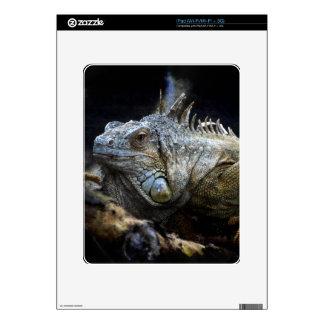 Iguana Lizard Reptile Wildlife iPad Skin