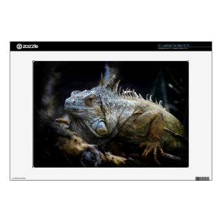 Iguana Lizard Reptile Wildlife Laptop Skin