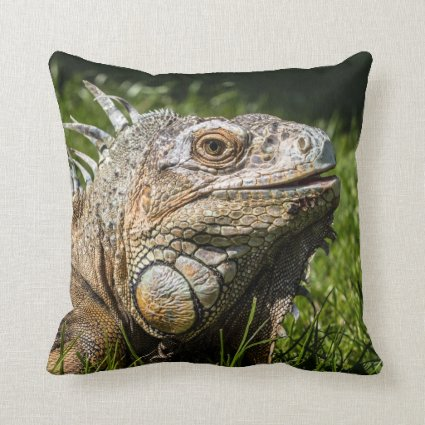 Iguana Lizard Throw Pillows