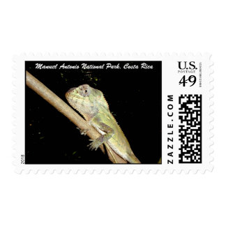 Iguana, Manuel Antonio N.P., Costa Rica Postage Stamp