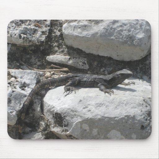 Iguana mexicana alfombrilla de ratones