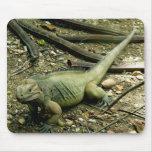 Iguana Mousepad Alfombrillas De Raton