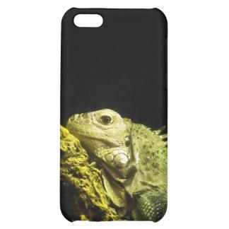 Iguana noble